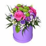 cutie flori colorate