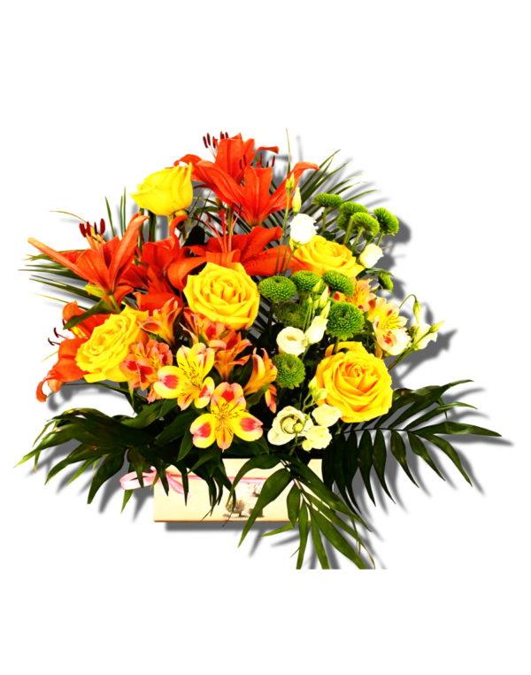 aranjament floral Crin Asia in cutie