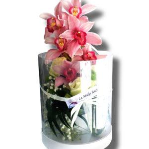 aranjament floral orhidee cutie transparenta