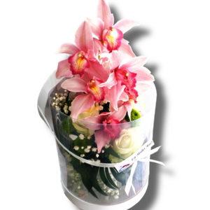 aranjament-floral-orhidee in-cutie-transparenta2