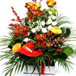 aranjament-floral-cutie-carte1