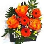 aranjament-floral-plic
